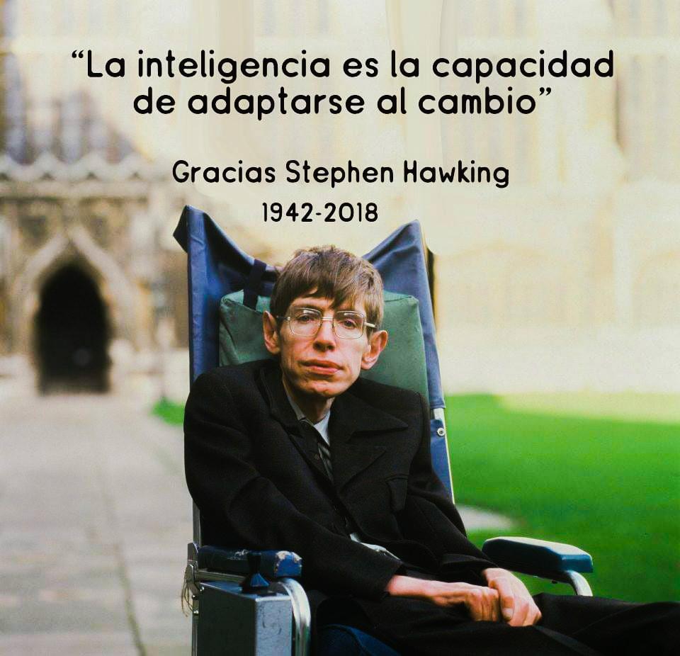 13 Frases Inspiradoras de Stephen Hawking